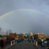 rainbow-gowanus-canal